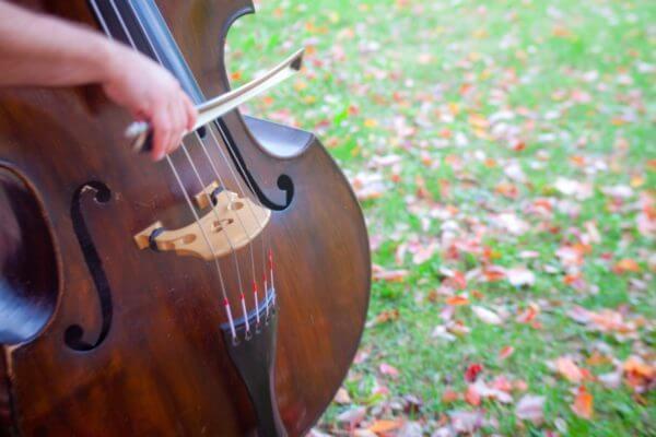 string orchestra gems cello